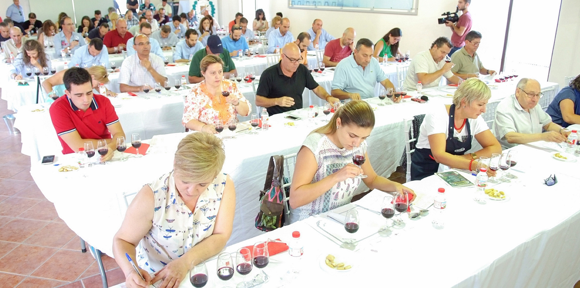 El Ayuntamiento convoca concursos de cata de brandy, vino y aceite
