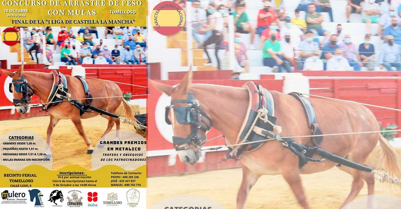 """Tomelloso será la sede de la Final de la """"I Liga de Castilla-La Mancha de arrastre de peso con mulas"""""""