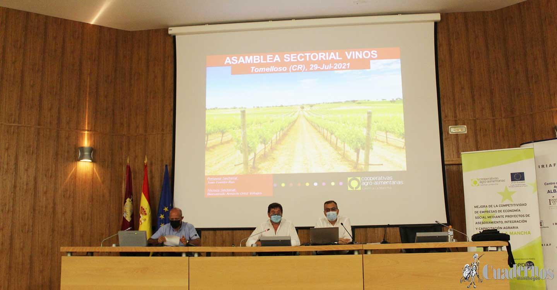 Cooperativas Agro-alimentarias C-LM prevé una cosecha de 25,6 millones de hl de vino y mosto en Castilla-La Mancha y de 43 en España