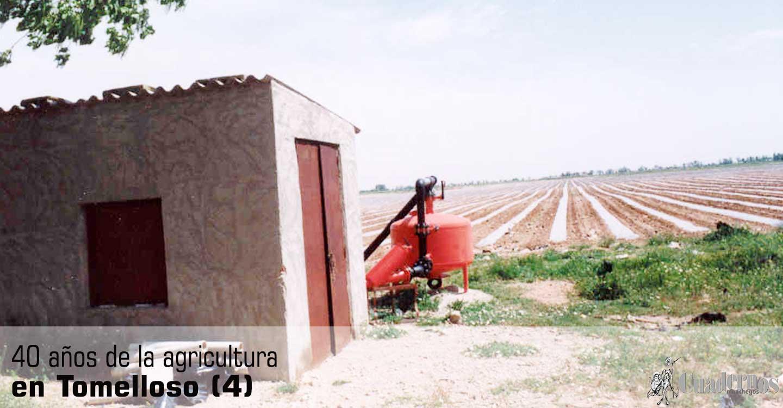 Cuarenta años de la agricultura en Tomelloso (4)