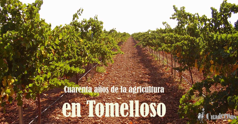 Cuarenta años de la agricultura en Tomelloso