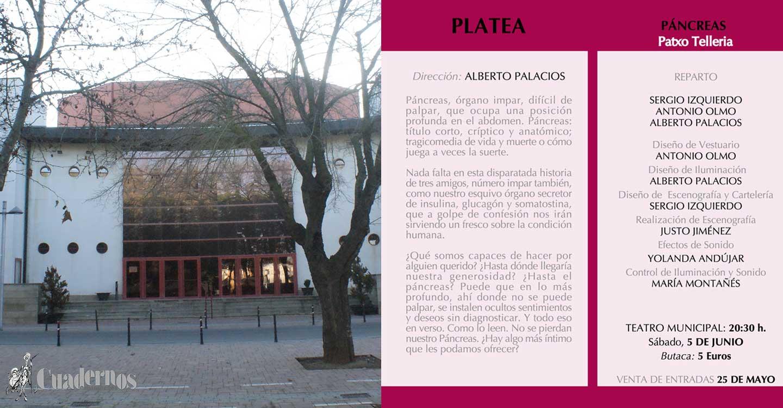 """Mañana martes, comienza la venta de entradas para """"Páncreas"""" del grupo Platea Teatro"""