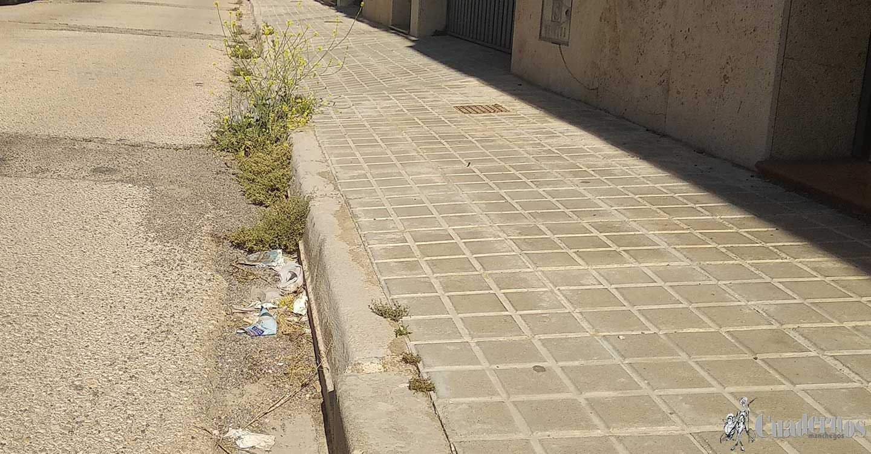 Izquierda Unida de Tomelloso denuncia el estado de las calles de la localidad por falta de personal en el servicio de limpieza viaria.