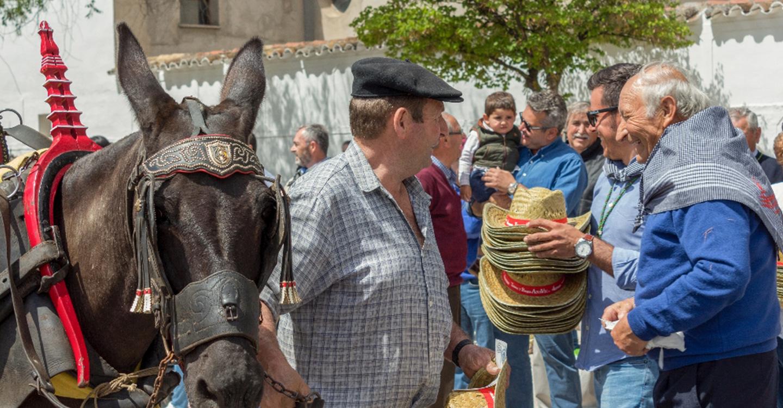 Los agricultores de Tomelloso celebran por todo lo alto la festividad de San Isidro