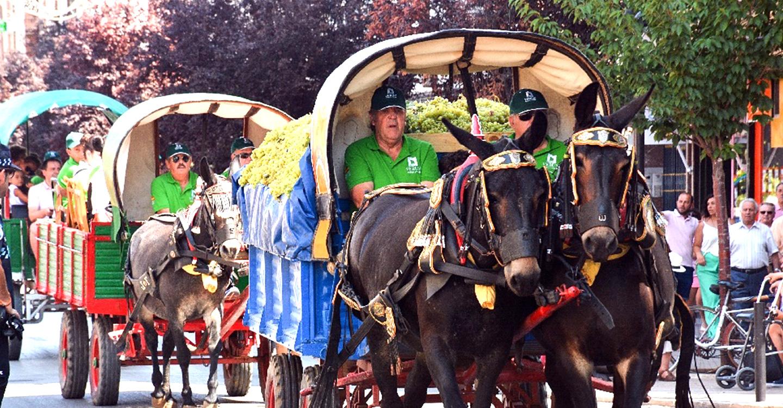 Modificado el recorrido del desfile de reatas del martes