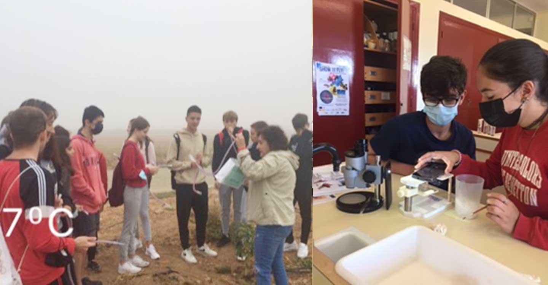 El IES Eladio Cabañero y sus alumnos siguen participando otro año más en un proyecto europeo que consiste en estudiar los cambios en el ADN de la mosca de la fruta