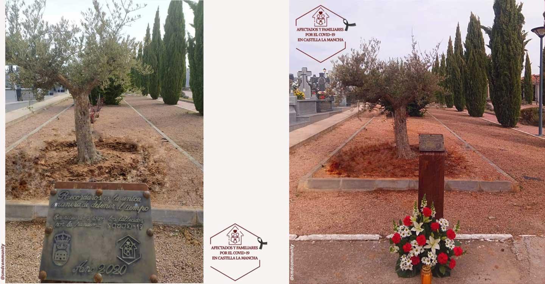Municipios de Castilla-La Mancha, entre ellos Tomelloso, honrarán a los fallecidos por la COVID19 con la plantación de olivos o  árboles representativos