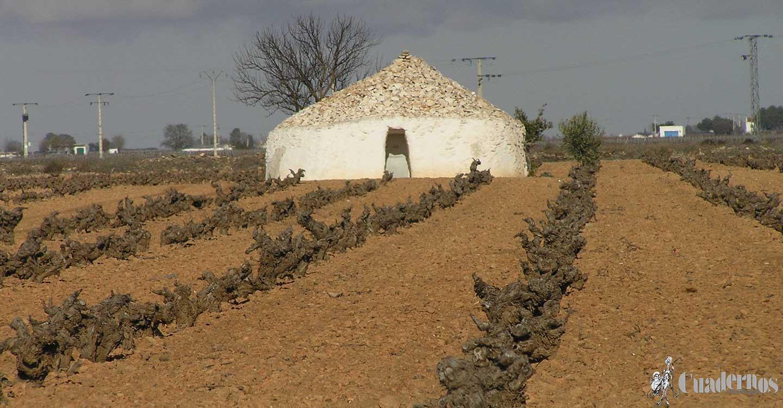 Las murallitas de piedra  seca del camino