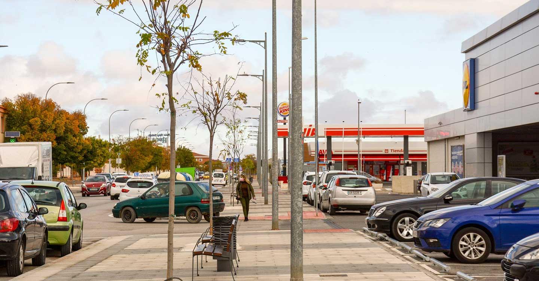 Con la plantación de árboles, finaliza la quinta fase de la avenida Juan Carlos I de Tomelloso