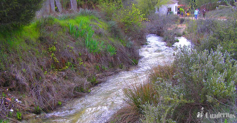 El río Guadiana Viejo, un cauce que permite regar los cultivos agrícolas en una zona de los términos de Tomelloso y Argamasilla de Alba