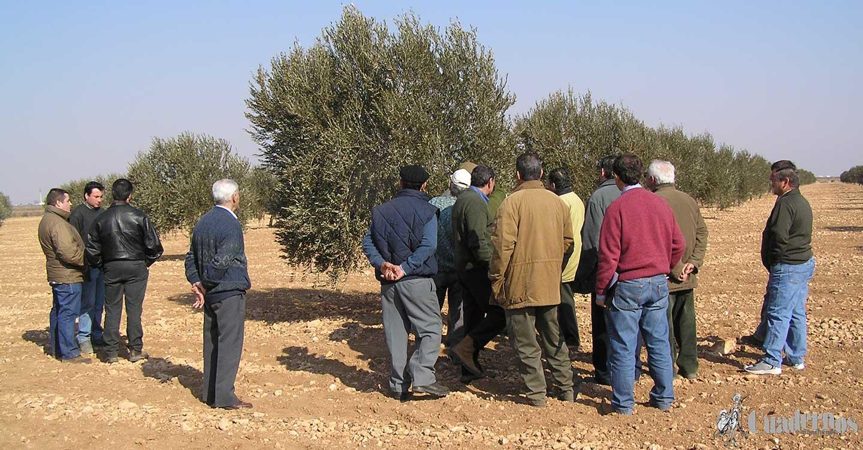 Un sistema educativo agrario en España y en Tomelloso