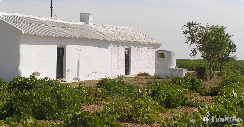 Tomelloso y sus casas de campo