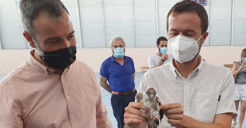 El Gobierno de Castilla-La Mancha declara la Zona Especial de Protección para las Aves de cernícalo primilla en dos iglesias en Almodóvar del Campo y en su pedanÃía Tirteafuera, en Ciudad Real