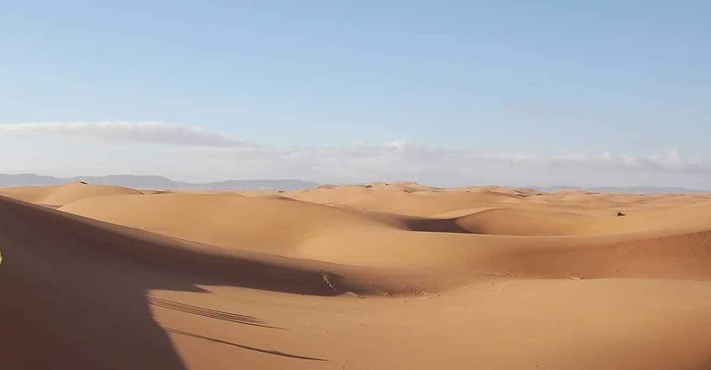 IU y el PCE C-LM muestran su apoyo al pueblo saharaui ante el saqueo y la ocupación ilegal del territorio por parte de Marruecos