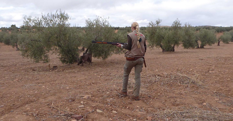 La temporada de caza cierra con buenos resultados en Castilla-La  Mancha
