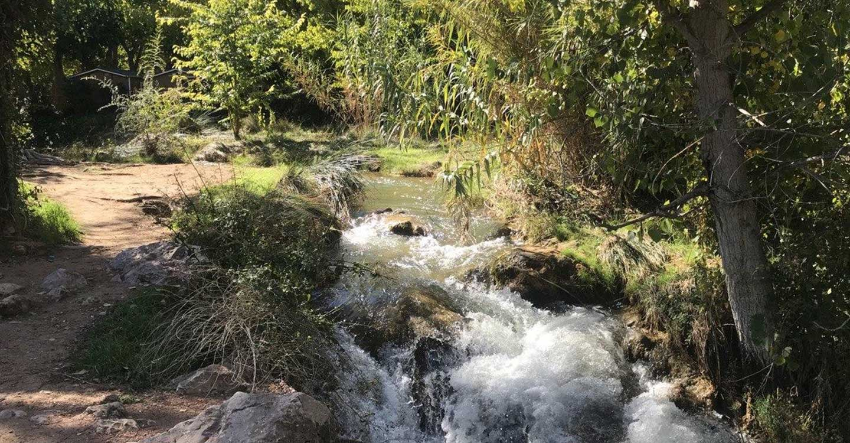 Todas Somos Podemos apuesta por la ecología de cara a las primarias de la formación en Castilla-La Mancha