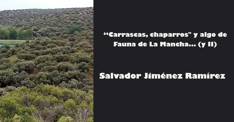 """""""Carrascas, chaparros"""" y algo de Fauna de La Mancha... (y II)"""