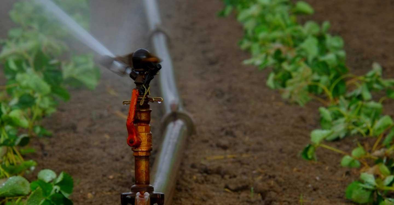Inversiones en materia de agua, ahora o… será tarde