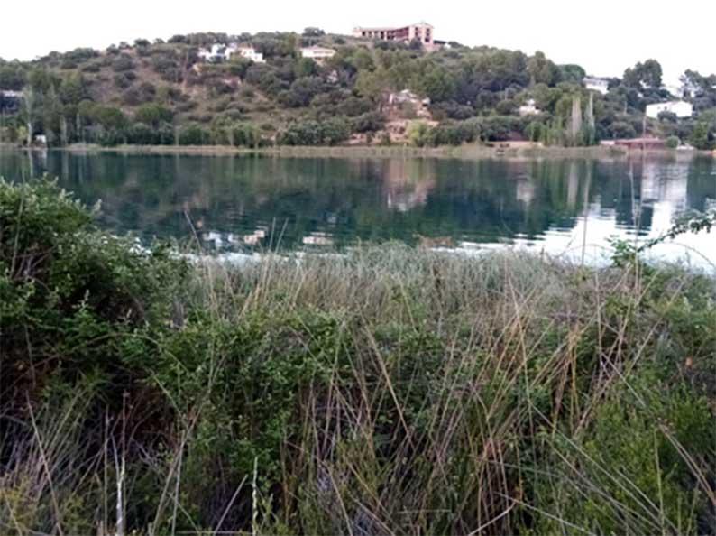 """Localizan restos paleontológicos de cápridos y felinos, de unos doscientos mil años de antigüedad, en los aledaños a la laguna """"La Colgada"""" (I)"""